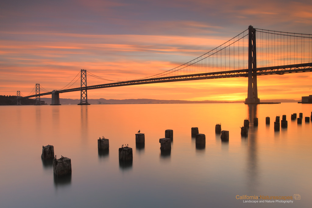 """Bay Bridge at Dawn"" <br>Location: Embarcadero Plaza, San Francisco, California.  <p><p>I don't think I had to wake up early to see this because what I saw was nothing less than a beautiful dream :)  <p>Tech Info: <br>Lens: Canon EF 17-40mm f/4L @ 22mm <br>Camera: Canon EOS 5D Mk II <br>Exposure: 25sec at f/14 and ISO 50 <br>Filters: LEE ND Grads 0.9 and 0.6 soft edge <br>Post Processing: Adobe Lightroom for white balance, Adobe PS for wide angle lens distortion correction. Rest is straight from the camera."