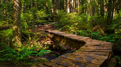 Boardwalk - Whistler, British Columbia