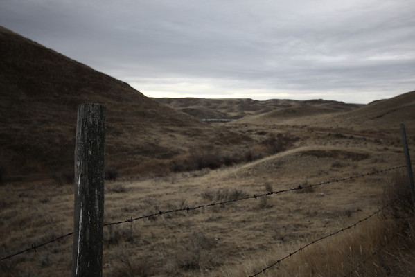 Barbed wire fence on a road leading through the river hills south of Eston Sask