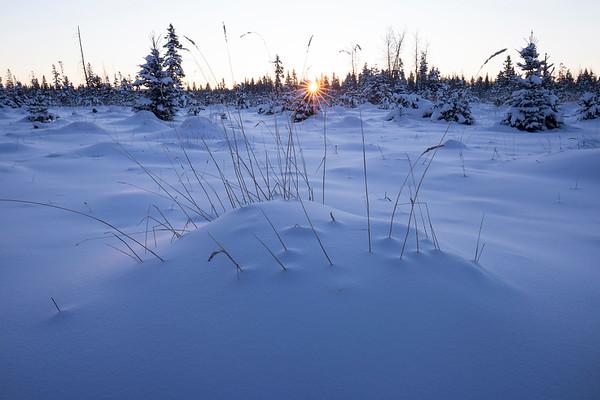 Polar Dawn - Water Valley, Alberta