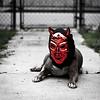 El Diablo