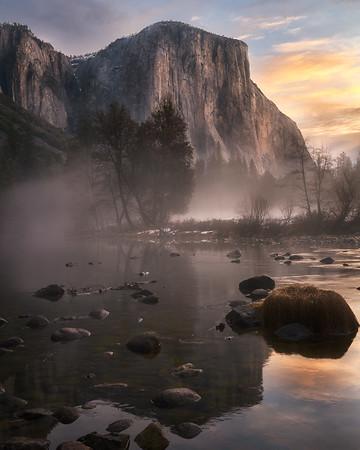 Yosemite Vally Meadow