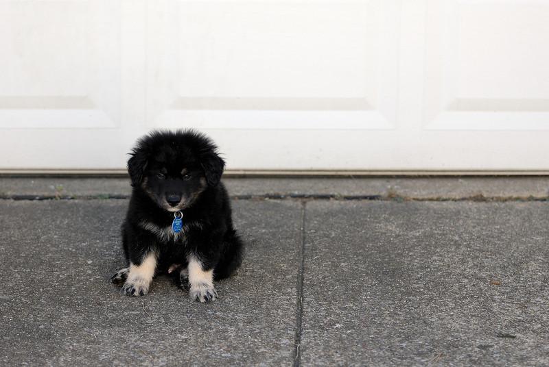 Guarding the Garage