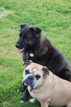 Murphy and Tori, March 31, 2008