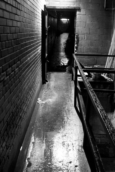 Day 199 -This is the Bat entrance to our apartment.  Or the back way I take the dog out when I'm on garbage duty.  Anyway between the rain and the black and white, I was happy with the result.  Specail thanks to my friend who helped me pick it out.  Giving up color for Lent.