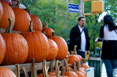 Day 046 -Fall is here and I knew it because I saw pumpkins on the street.  Not to mention the colder weather, changing leaves, and just plain awesomeness of fall.