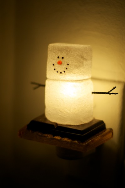 Day 100 -The decorations are up in our aptartment.  Christina collects smores ornaments, but they are all in storage.  However, we got lucky and found this night light to make it feel more like home.