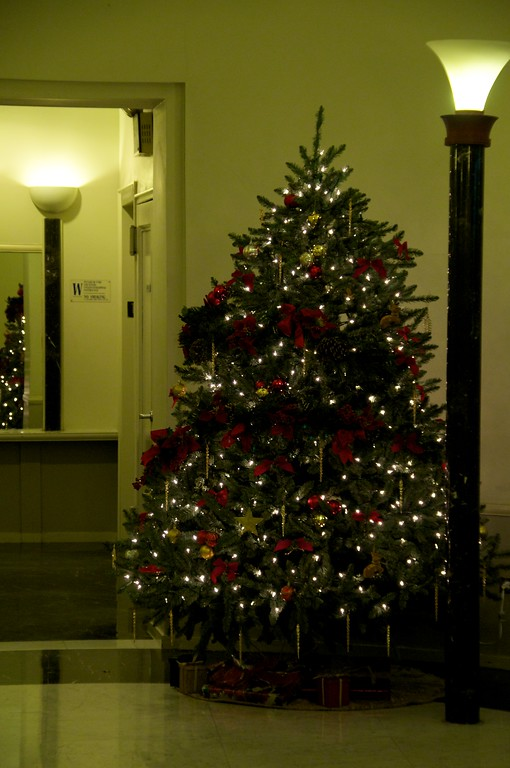 Day 088 -Today's photo comes to you from my lobby.  Despite having a pretty good day, I was pretty sick and barely got the dog out.  It still warms my heart to see the tree up every time.