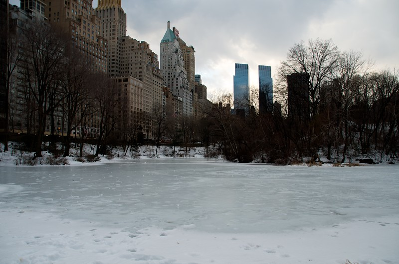 Day 160 -ALthough it was a bit warmer today, the pond is still pretty much frozen in Central Park.  Christina commented on how it looked pretty desolate.  We'll see how it looks in the spring