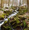Schalls Gap, Rothrock State Forest, PA, USA, January 2021