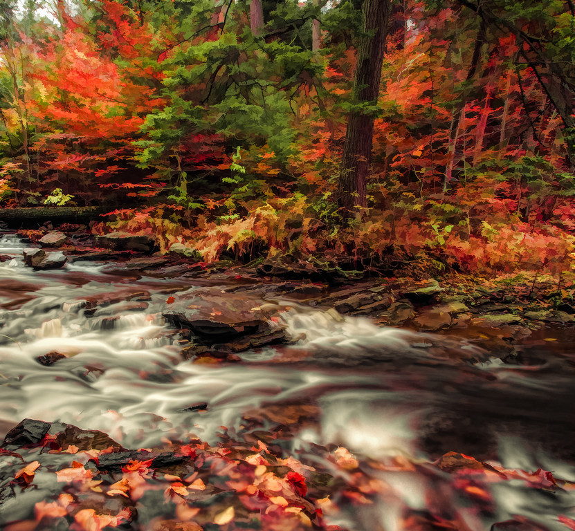 Ricketts Glen State Park, PA, USA, Fall 2014
