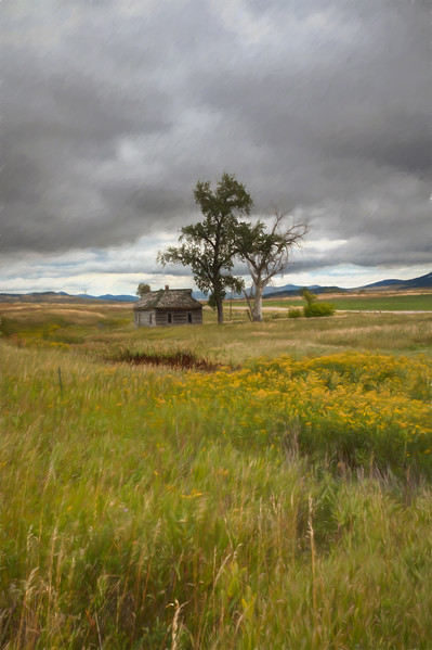 In The Heart of Montana