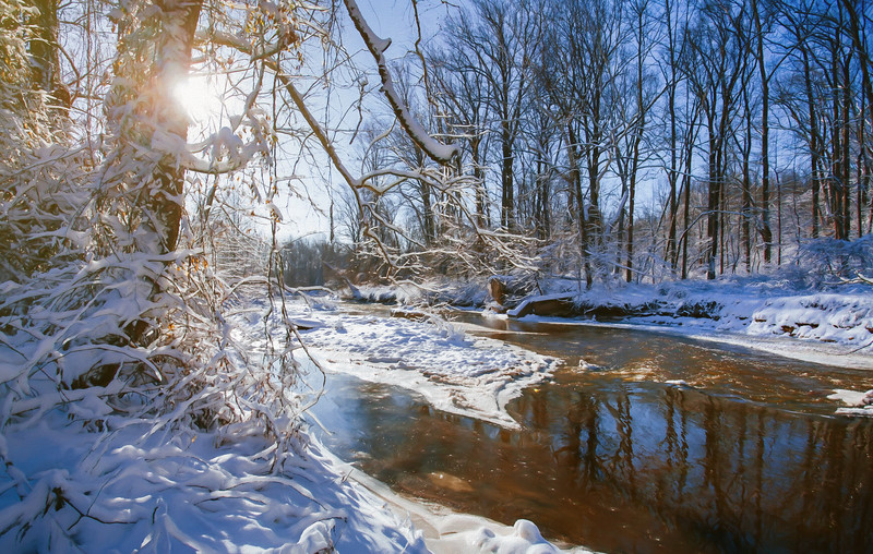 Fair Hill Natural Resources Management Area, MD, USA, March 2015