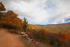Bear Gap Rd Vista, Rothrock State Forest, PA, October 2015