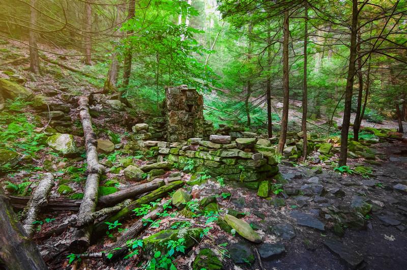 Rothrock State Forest, PA, USA, July 2015