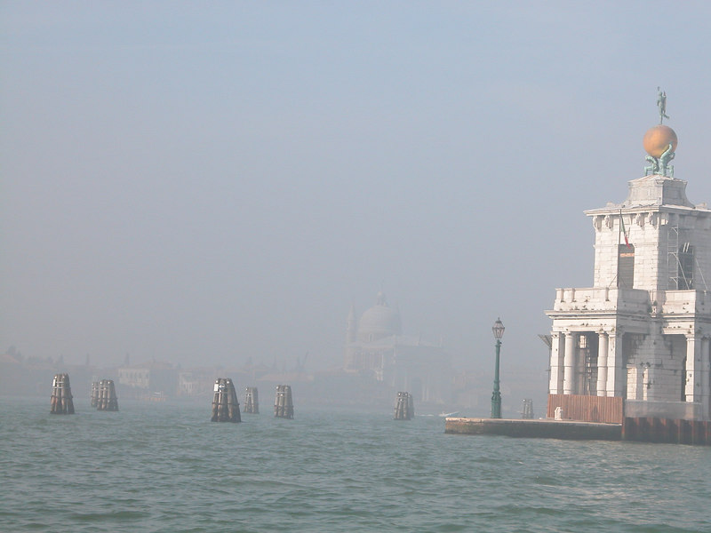 Wanda Fielder, Venice