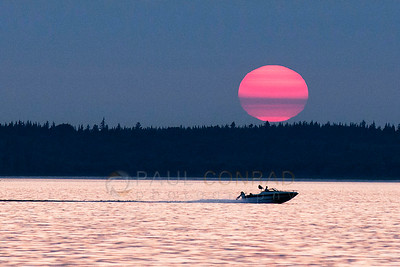 © Paul Conrad/Pablo Conrad Photography  A boat is dwarfed by the setting Sun as it goes to bed over Bellingham Bay in Bellingham, Wash.