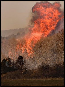 © Paul Conrad/Pablo Conrad Photography  After jumping Highway 82, flames erupt in a grove of cottonwood.