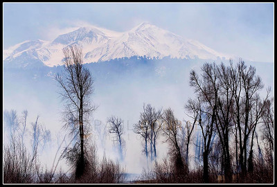 © Paul Conrad/Pablo Conrad Photography  With Mount Sopris looming over, heavy smoke filters through a grove of cottonwoods along the Roaring Fork River near Carbondale, Colo.