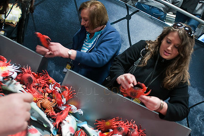 "© Paul Conrad/Pablo Conrad  Deanna Meister, left, and her daughter Ryan Meister of Elam, Wahs., compete in a crab sorting contest at Deadliest Catch Con at the Bell Harbor Conference Center on Saturday afternoon April, 9, 2011, in Seattle, Wash. Ryan says she enjoys the show because unlike other reality show, ""It's real and it's the only one worth watching."""