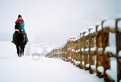 "© Paul Conrad/Pablo Conrad Photography Cheryl McCulloch takes her 18-year-old Arabian ""Ace"" out for a Sunday drive along Owl Creek Road during lingering snow showers near Aspen, Colo."