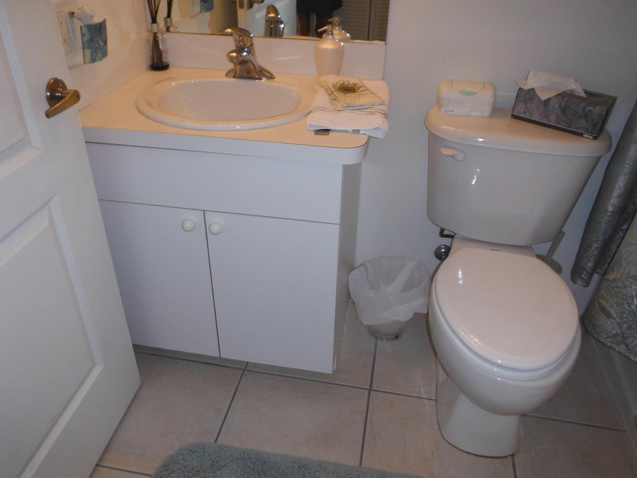 small bath - before
