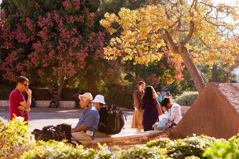 """Students sit under a tilted tree which is a monument to those killed on the Hebrew University Mr. Scopus campus during the second intifada. <a href=""""http://en.wikipedia.org/wiki/Hebrew_University_massacre"""">http://en.wikipedia.org/wiki/Hebrew_University_massacre</a>"""