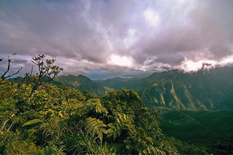 Northeast Kaua`i Vista from Kilohana Lookout, Kaua`i, Hawaii