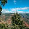 Waipo`o Falls in Waimea Canyon, Kaua`i Hawaii