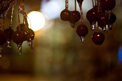 2/28/12 - Cherry Icees