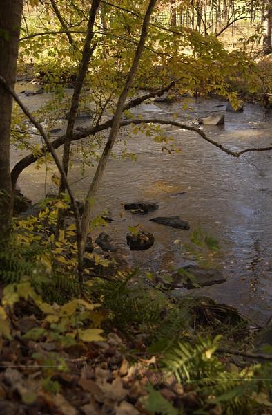 Perkiomen Creek near Green Lane in Autumn  -  10/21/2012