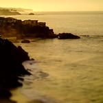Laguna Gold