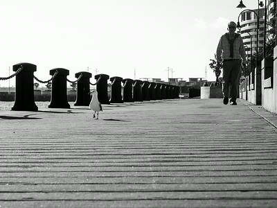Strolling - 365/360