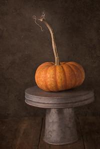 Just a Pumpkin...