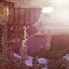 bath_ruins_flower