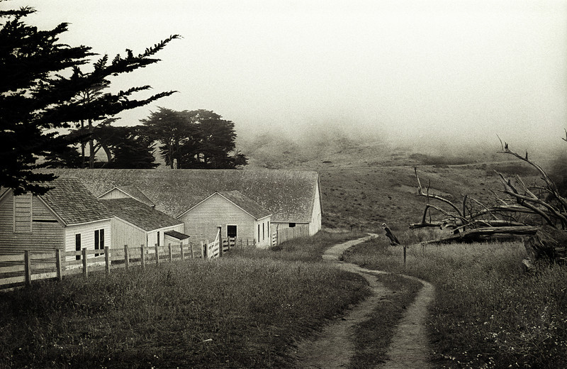 002IMG0022_pt_reyes_ranch_shp_dodge