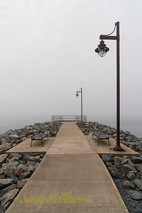 Harbour fog.