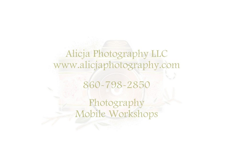 Photography Mobile Workshop