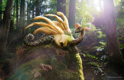 """Dacrycarpus Dragon""  An imaginary dragon created from parts found on a hike along a local trail. This image was created for the letter D in my ongoing 26 week A-Z project  http://photos.sherstone.com/Creative/26-week-A-Z-Project/"
