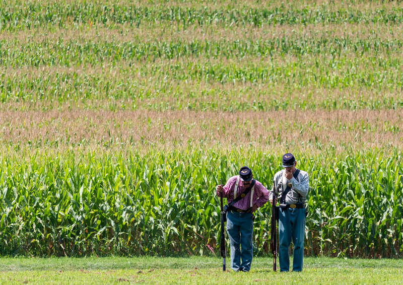Soldiers and the Cornfield
