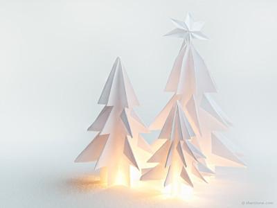 P - Paper Pines