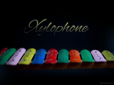X - xylophone