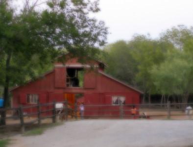 Barn & Driveway