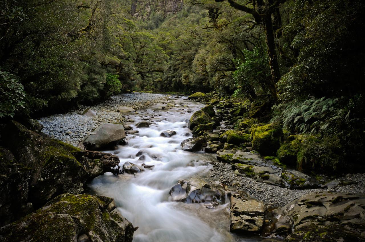 Milford Sound, South Island, NZ