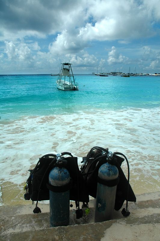 """Ready to Dive""<br /> Bridgetown, Barbados"