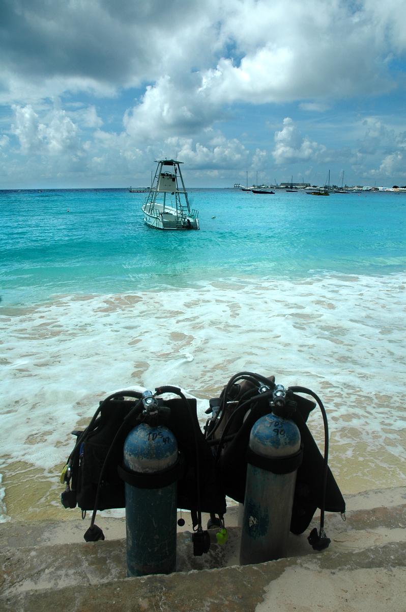 """""""Ready to Dive""""<br /> Bridgetown, Barbados"""