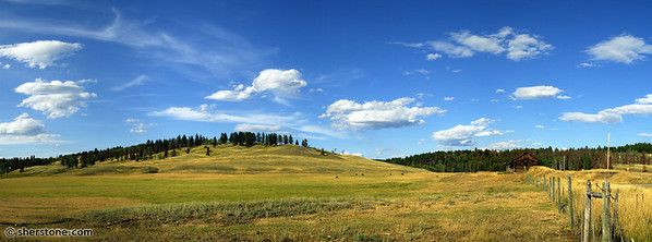 """hilly clouds pano""  The combination of smooth hills, clouds, cattle and the wooden cabin was  irresistible."
