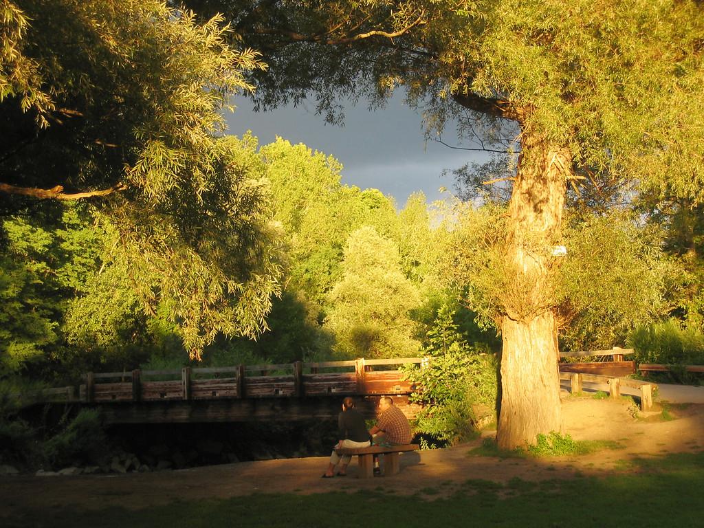 2005_8_15_Ellison_Park_017