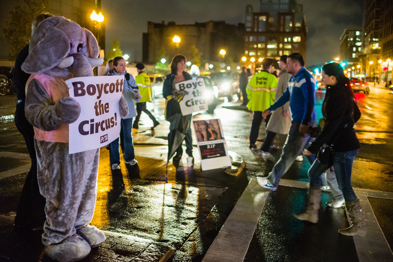 "October 10, 2012 - Patti Jorash, at left in the elephant outfit, protests the Ringling Bros. Circus' treatment of animals as circus goers walk by on their way to opening night at the TD Garden Wednesday. Protestors, about 50 in all, handed out leaflets, held signs, passed out coloring books, and shouted anti-circus chants throughout the two hour protest. Laura Sun, PETA's Boston contact and the protest's organizer, said ""PETA people are the nicest people you could ever want to know."" Photo/Christopher Weigl"