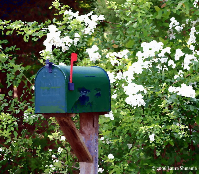 5-3-06- Wednesday- outgoing mail on a country road.